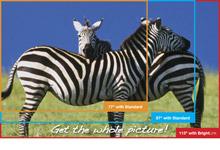 BrightLink 475Wi Interactive Projector w/Wall